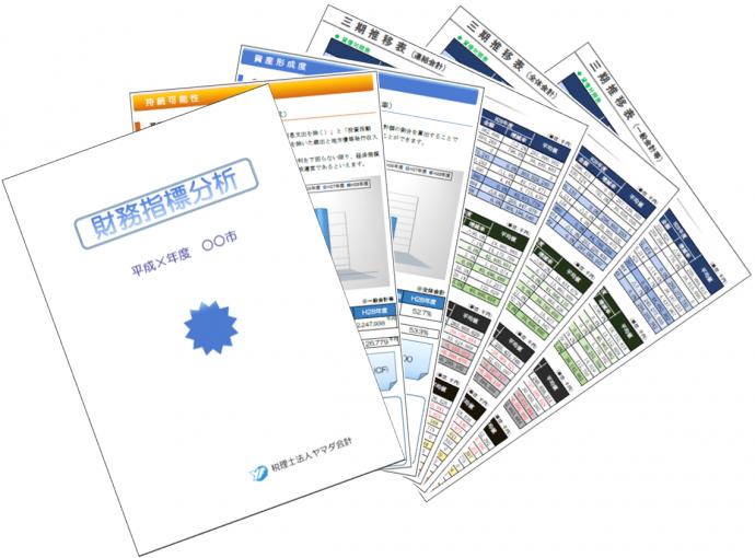 財務指標分析見本